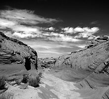 Watering Holes Canyon by sedimages