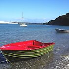 Boats moored at Mangawhai estuary, New Zealand by amypie71