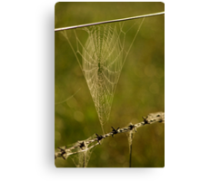 my heart in a cobweb Canvas Print