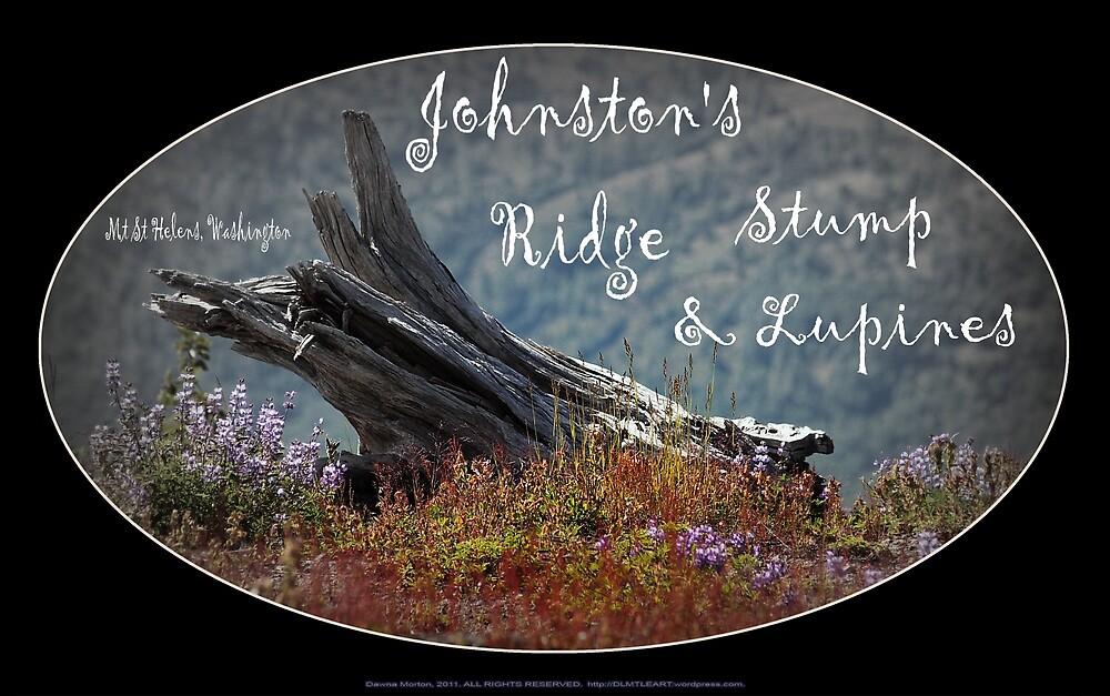 dead stump & lupines, Johnston's Ridge oval by Dawna Morton