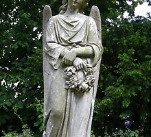 angel looking over us by cmlitchfield