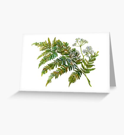 Watercolor fern and flowers Greeting Card