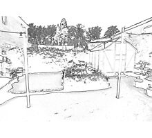 Pencil Back Garden  Photographic Print