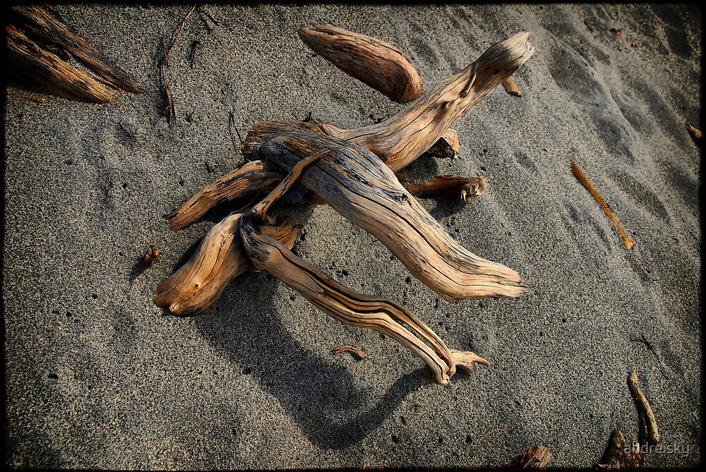Wood and sand by andreisky