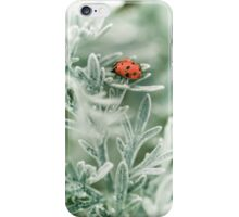 Lady Bug iPhone Case/Skin