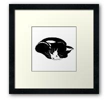 little kitten who sleeps peacefully Framed Print