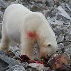 Polar Bear Dinner 2 by Aaron Paul Stanley