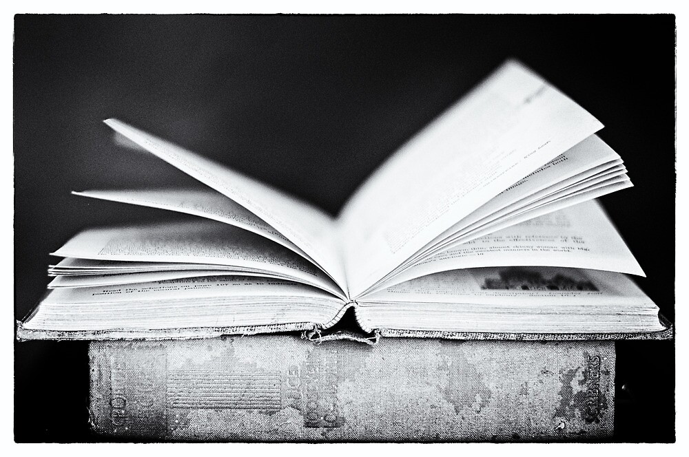 An Open Book by Sarah Thompson-Akers