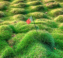 The Grassy Hill by manateevoyager