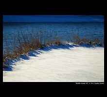 Spring Lake's Edge Covered With Snow by © Sophie W. Smith