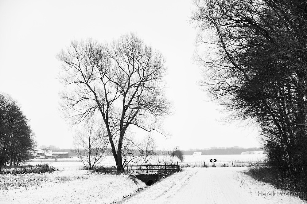 Snowy road by Harald Walker