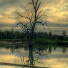 Wonga Reflections (Vertical) - Wonga Wetlands, Albury NSW - The HDR Experience by Philip Johnson