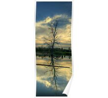 Wonga Reflections (Vertical) - Wonga Wetlands, Albury NSW - The HDR Experience Poster