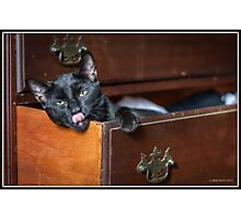 The Dresser Drawer Bed Photographic Print