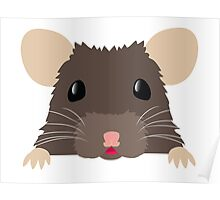 Cute peeking pet RAT Poster