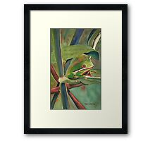 Tell Me a Tale, Tree Frog Framed Print