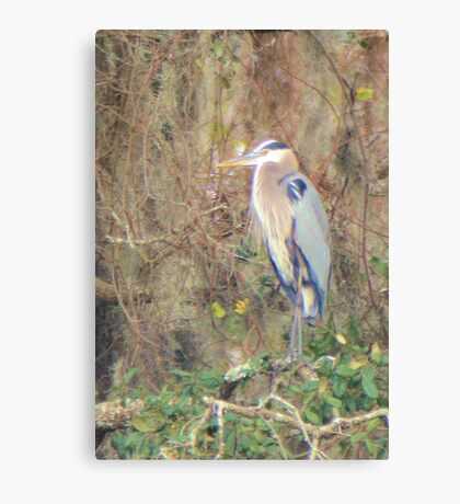 Painterly Heron Canvas Print