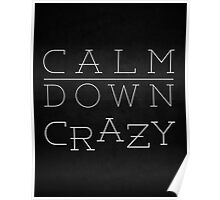 Silver Linings Playbook - Calm Down Crazy  Poster