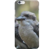 Kookaburras Keeping Company by Lorraine McCarthy iPhone Case/Skin