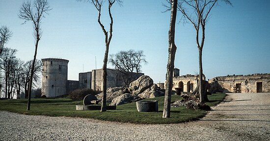 Discarded mill stones Faliase castle grounds 198402170035 by Fred Mitchell