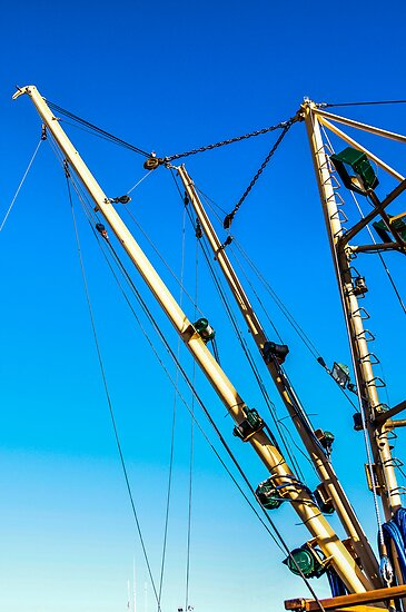 Masts by Marian Grayson