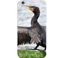 Airing my Wings By Lorraine McCarthy iPhone Case/Skin