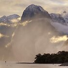 Milford Sound Sunset by Allyeska