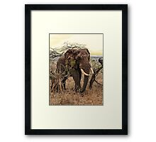 Imposing walk Framed Print