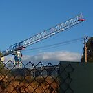 thee cranes ov Brisbane 2013 DAILY TOUR - Day 25 by Craig Dalton