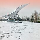 Heathrow Concorde - Brooklands Museum by Colin  Williams Photography