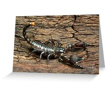 Imperial Scorpion Greeting Card