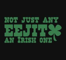 Not just any EEJIT - and IRISH one by jazzydevil