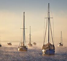 Day break - Corio Bay Geelong by Hans Kawitzki