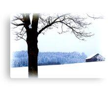 Bavarian Winter Scene Metal Print