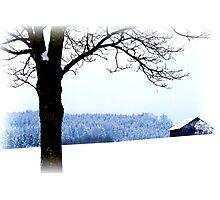 Bavarian Winter Scene Photographic Print
