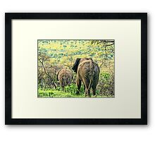 bums away Framed Print