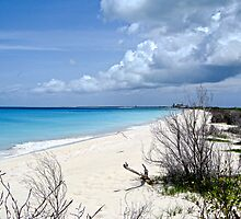 13 mile beach in Barbuda by globeboater