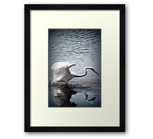 Caught You by Lorraine McCarthy Framed Print