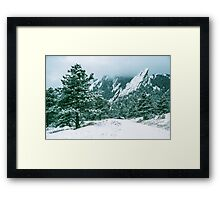 Bluebell Road And The Flatirons Framed Print