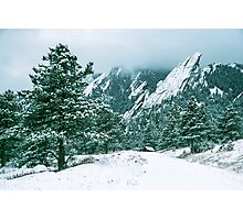 Bluebell Road And The Flatirons Photographic Print