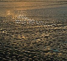 Sunset Low Tide by Scott Johnson