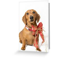 Spice of life - Pepper#3 Greeting Card