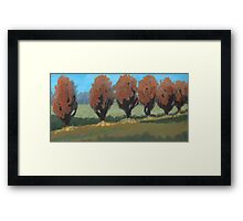 Orange Trees Framed Print