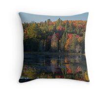 Algonquin Park, Northern Ontario Throw Pillow