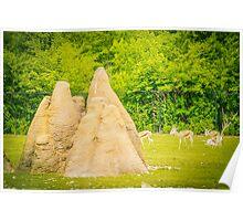 termite hills Poster