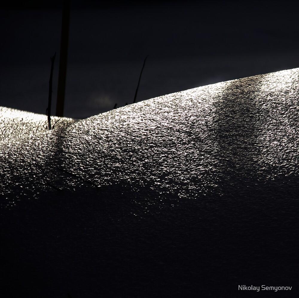 skin of winter by Nikolay Semyonov