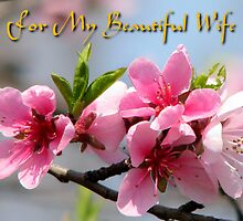 For My Beautiful Wife card by Dennis Melling