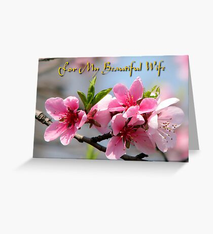 For My Beautiful Wife card Greeting Card