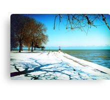 the Art of Winter Canvas Print