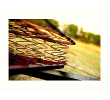Rusted Mattress  Art Print